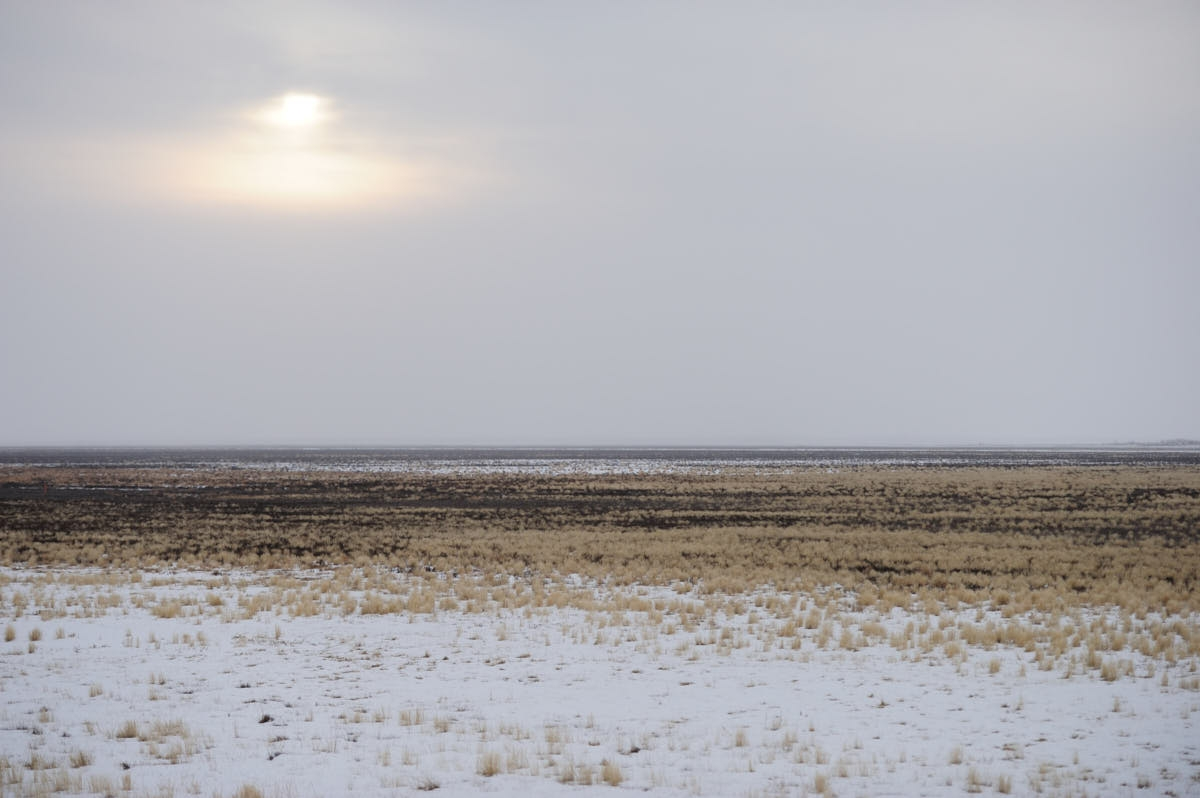 OR: Scenes From Harney County