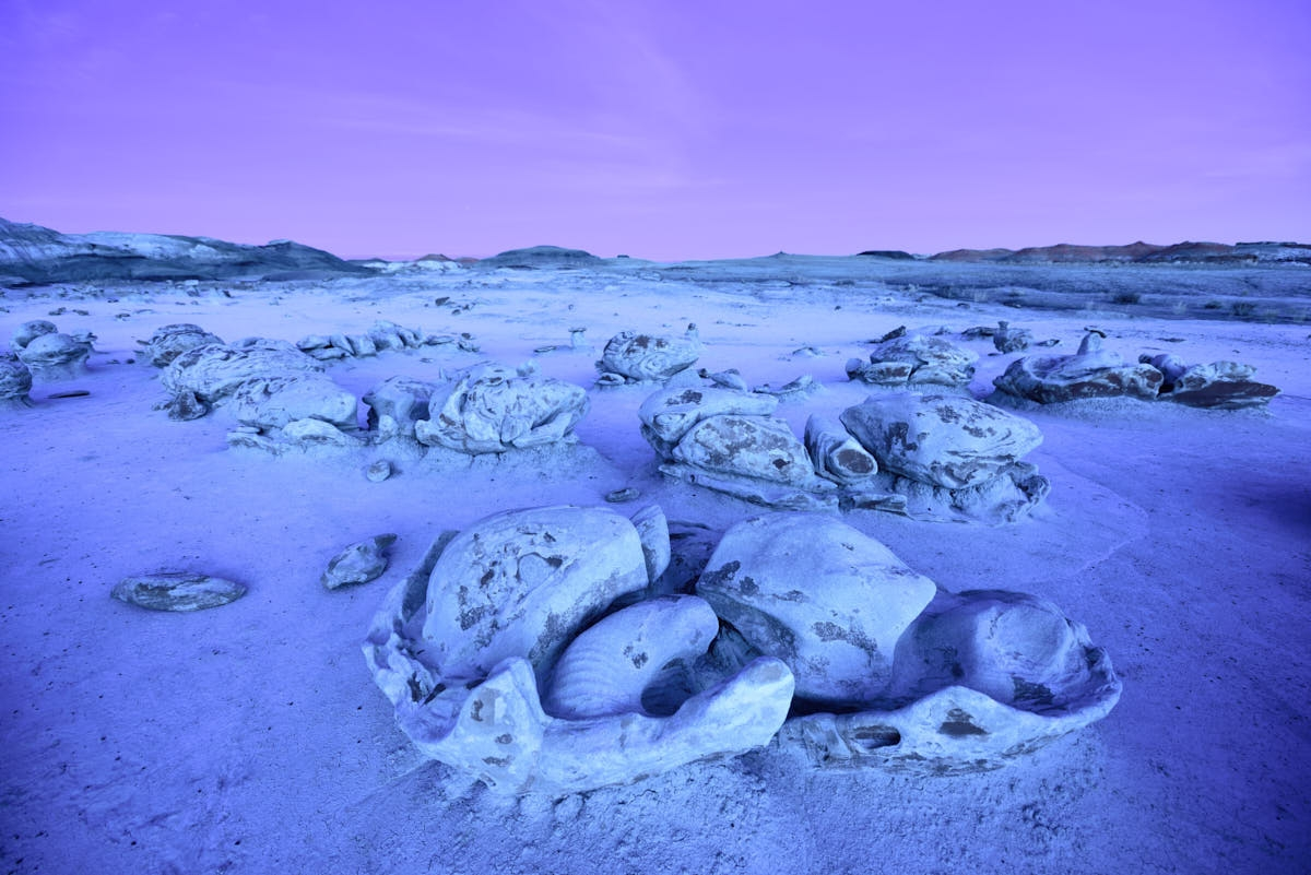NM: Otherworldly Landscape of the Bisti/De-Na-Zin Wilderness