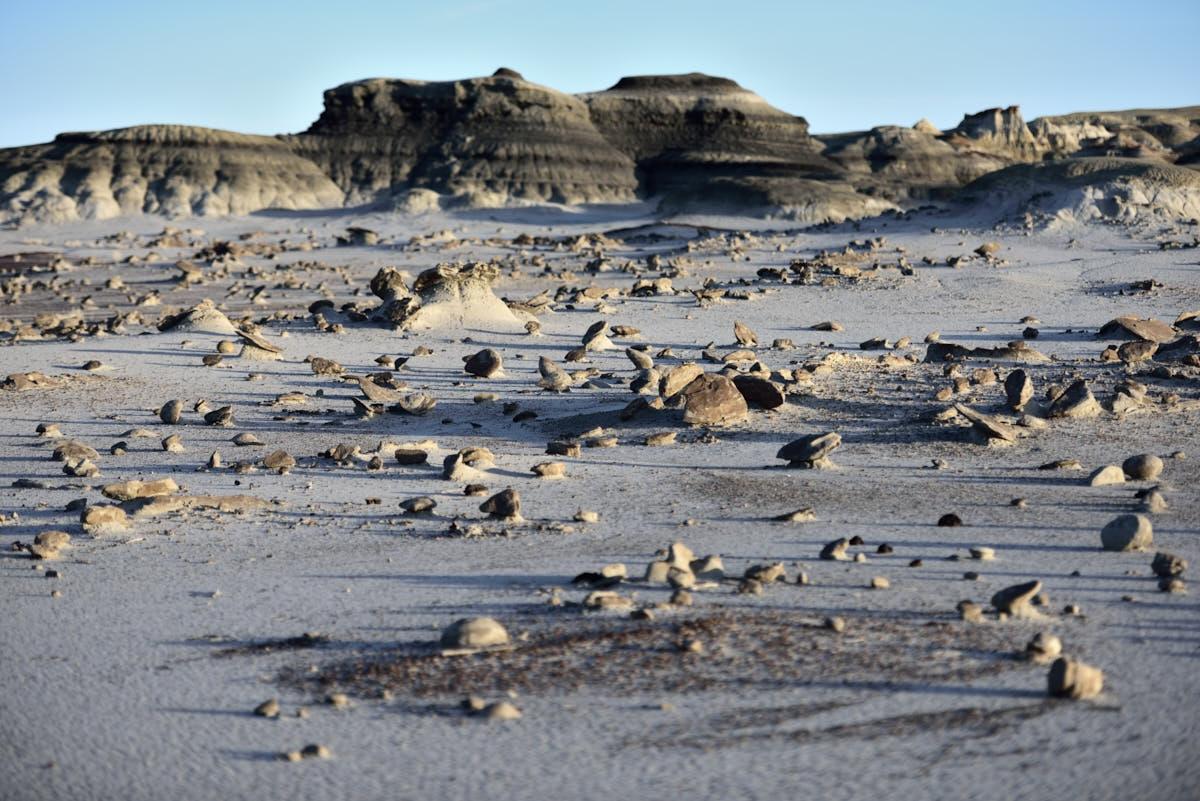 NM: Otherworldly Landscape of the Bisti/De-Na-Zin Wilderness