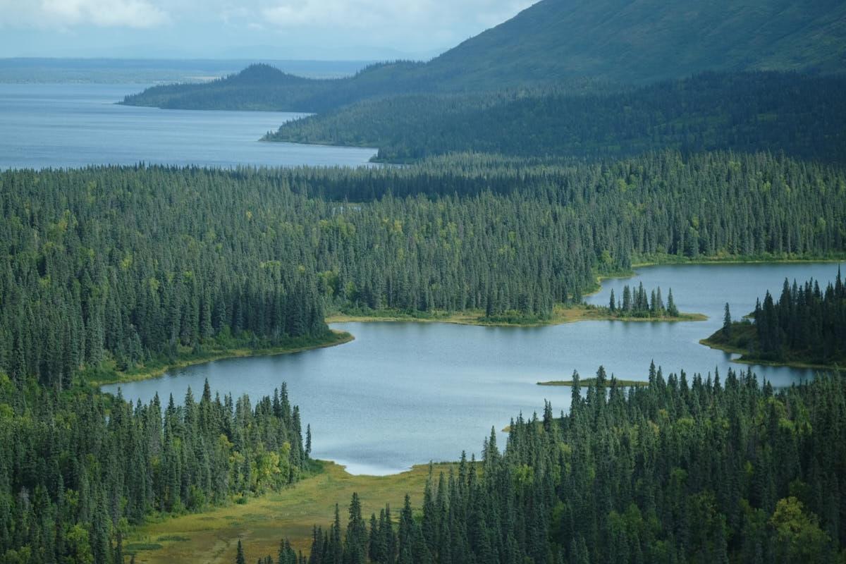 AK: Aerial Scenes Over Wood-Tikchik State Park
